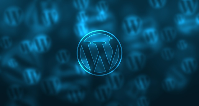 3 plugin indispensabili per WordPress