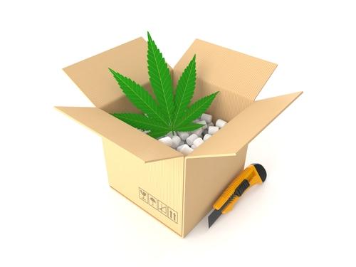 Justmary: il primo delivery di Cannabis legale a Milano
